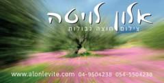 אלון לויטה - צילום חוצה גבולות